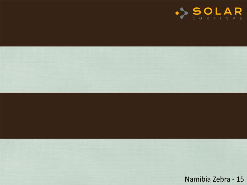Namibia Zebra - 15