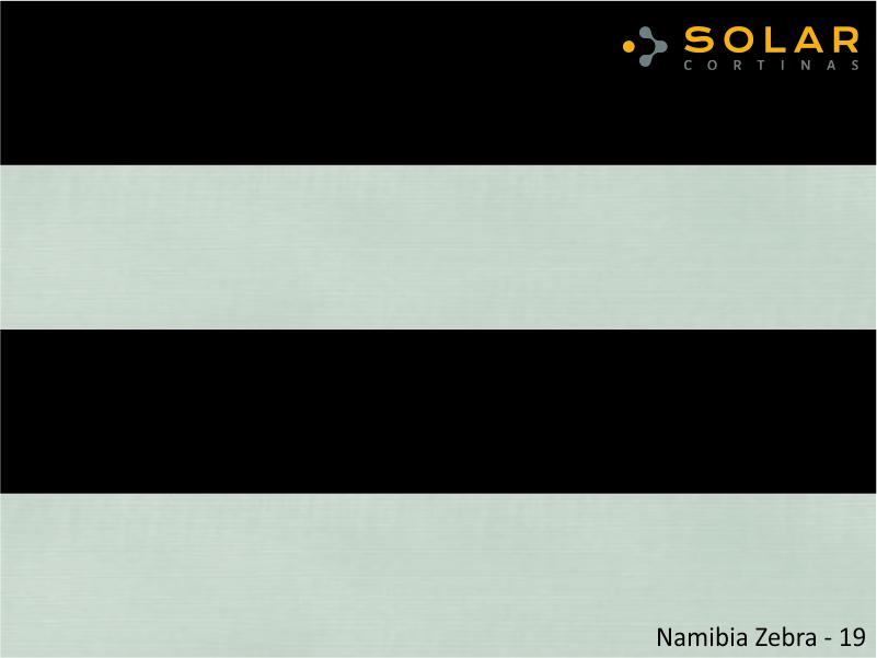 Namibia Zebra - 19